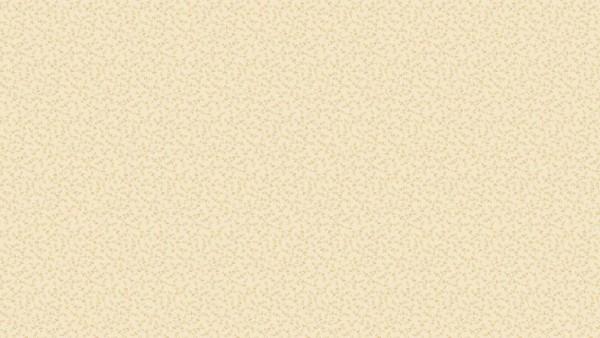 Wit/beige
